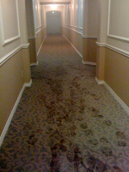 The hallway, filled with smoke. (It's kinda hard to see.) The double doors automatically shut when the alarms sound.