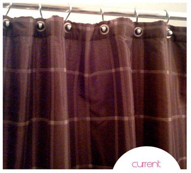 shower-curtain-for-realz1