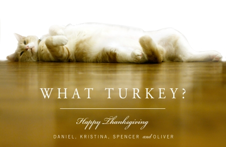 What turkey?, Studio 67 Designs