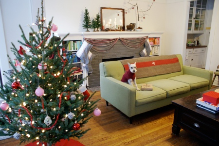 Christmas tree, mini schnauzer, green sofa, Corona sofa, vintage Chicago apartment